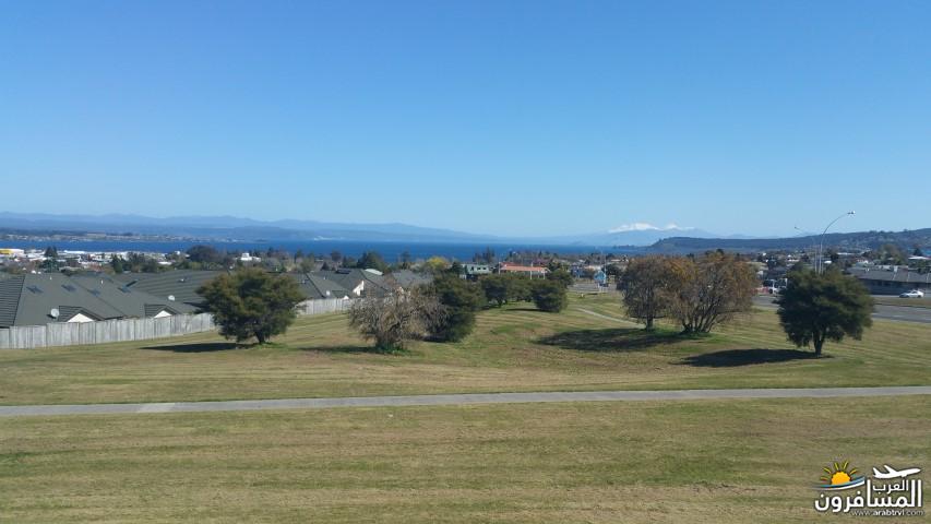 نيوزلندا العشق والجمال-609540