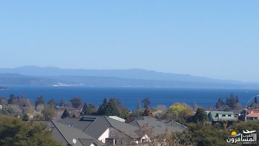 نيوزلندا العشق والجمال-609541