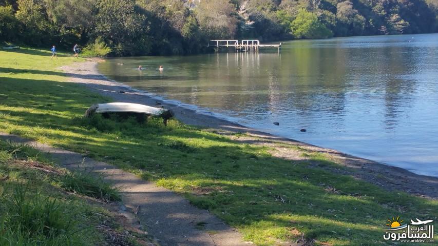 نيوزلندا العشق والجمال-609546