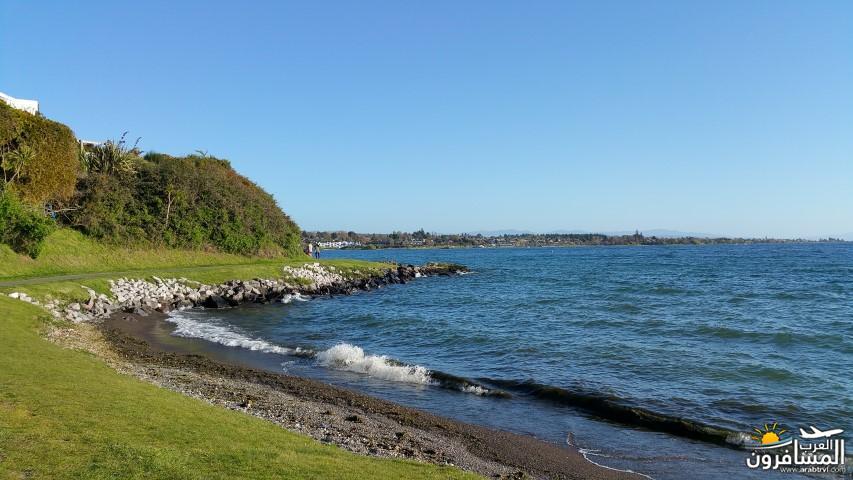 نيوزلندا العشق والجمال-609557