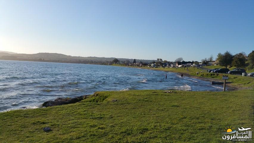 نيوزلندا العشق والجمال-609567