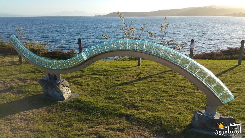 نيوزلندا العشق والجمال-609571