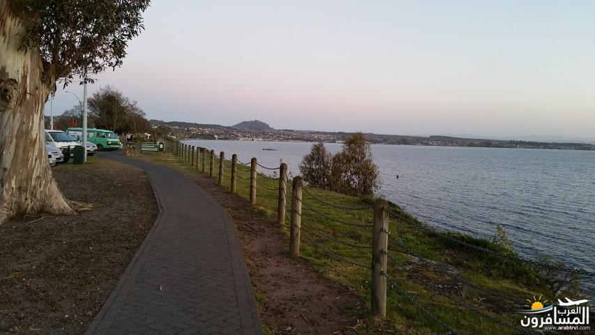 نيوزلندا العشق والجمال-609582