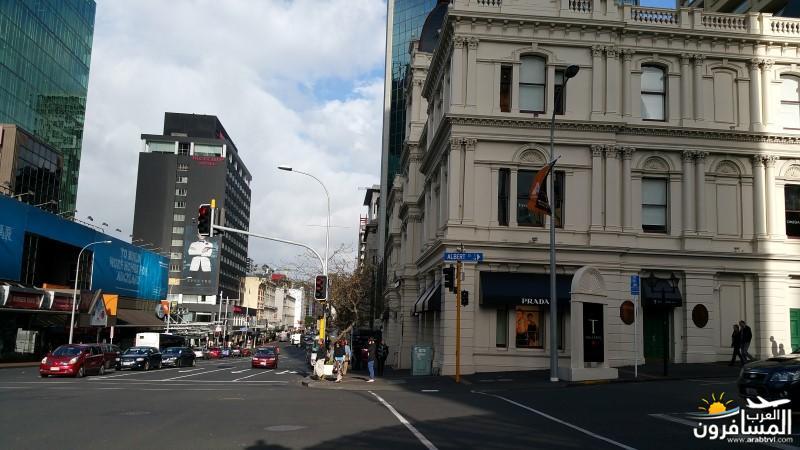 نيوزلندا كيا اورا يا عرب-609624