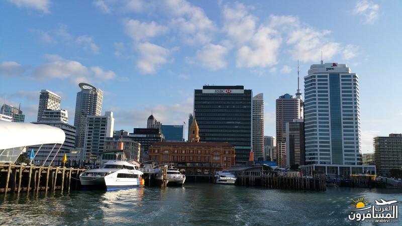 نيوزلندا كيا اورا يا عرب-609637