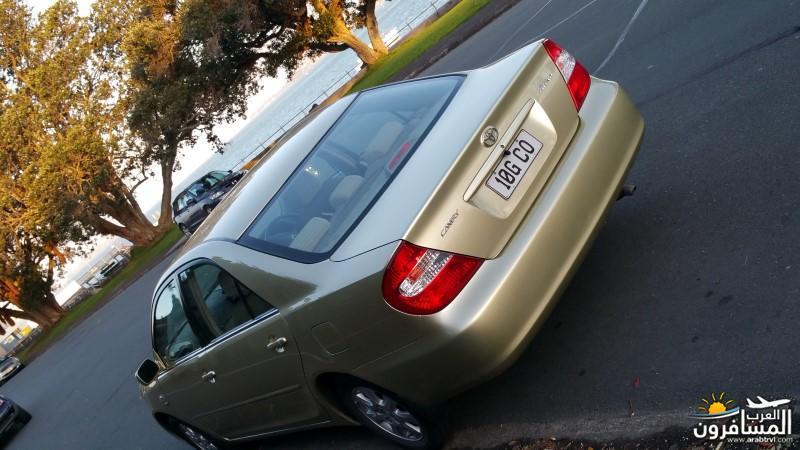 نيوزلندا كيا اورا يا عرب-609662