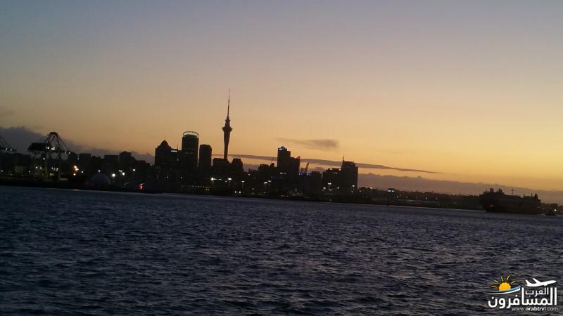 نيوزلندا كيا اورا يا عرب-609680