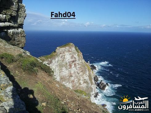 arabtrvl1448434078394.jpg