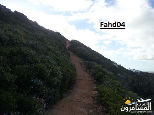 arabtrvl1448434121717.jpg