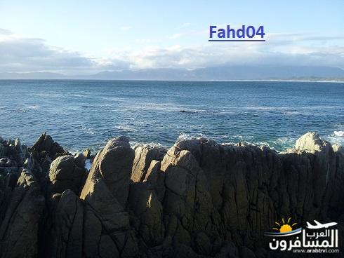 arabtrvl1449575176823.jpg