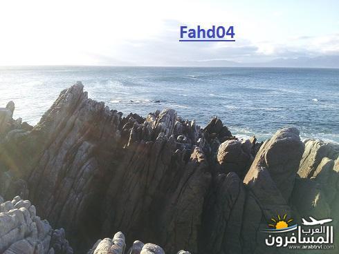 arabtrvl14495751769410.jpg