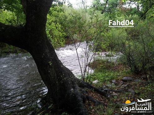 arabtrvl145095143247.jpg