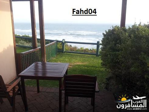arabtrvl1452020550694.jpg