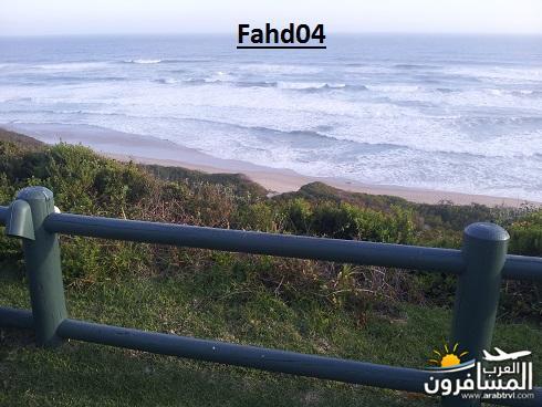 arabtrvl1452020550715.jpg