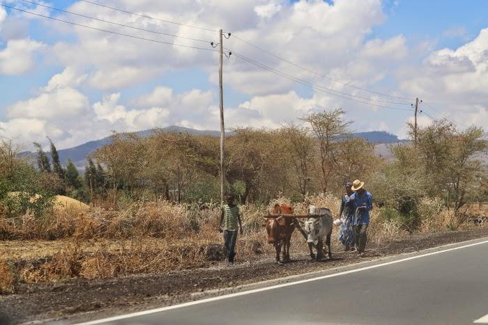 617257 المسافرون العرب اكتشف معنا اثيوبيا