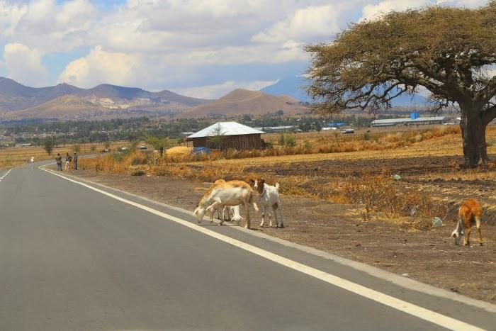 617258 المسافرون العرب اكتشف معنا اثيوبيا