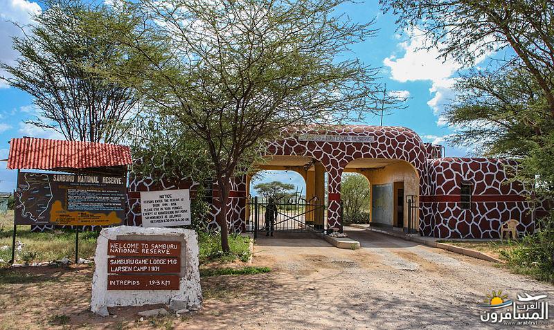 617371 المسافرون العرب الحديقة الوطنية في كينيا