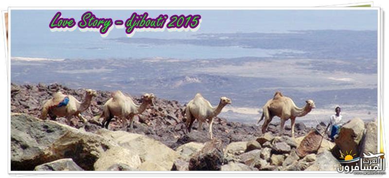 618623 المسافرون العرب من هي جيبوتي ؟؟
