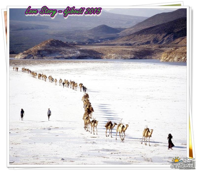 618630 المسافرون العرب من هي جيبوتي ؟؟