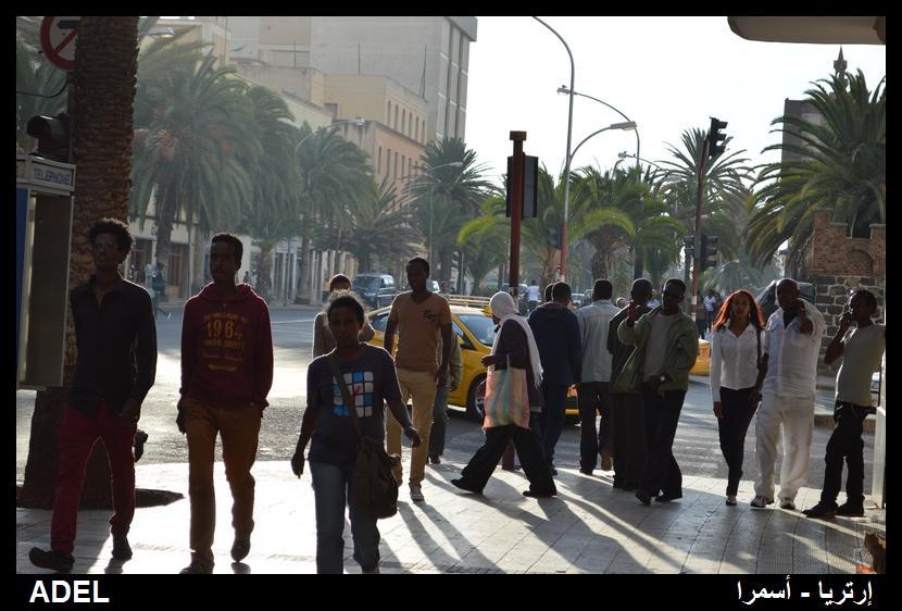618996 المسافرون العرب أرتريا الضباب والدجي