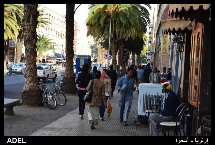 618999 المسافرون العرب أرتريا الضباب والدجي