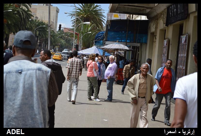 619000 المسافرون العرب أرتريا الضباب والدجي
