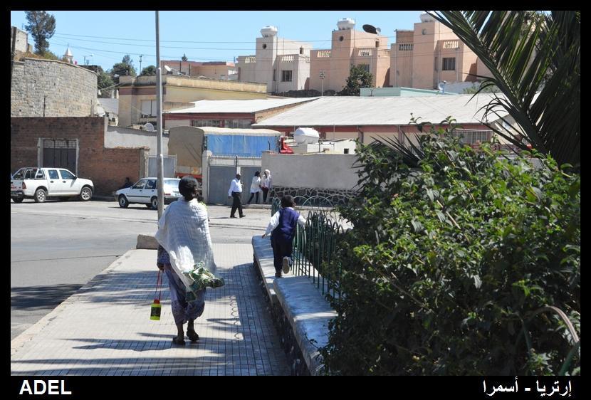 619007 المسافرون العرب أرتريا الضباب والدجي