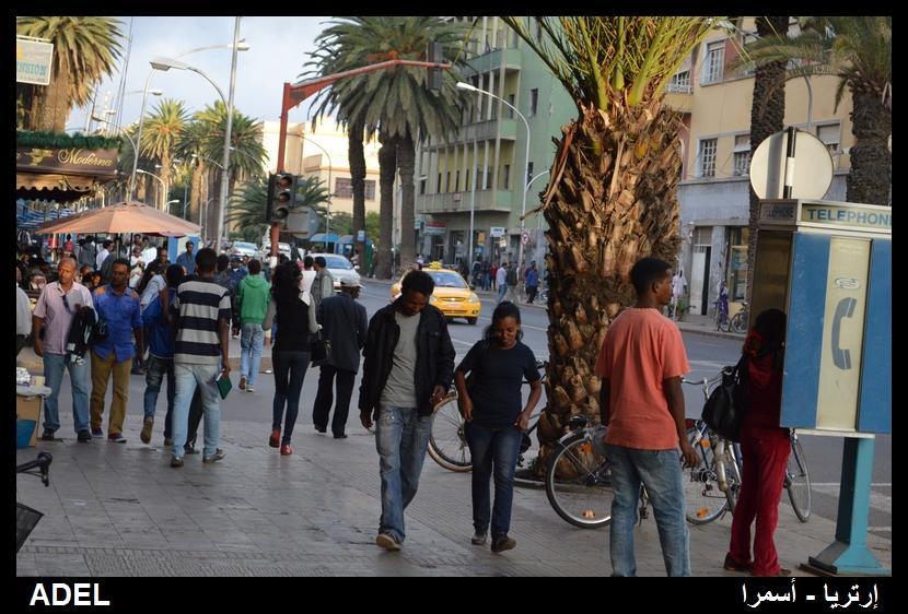 619010 المسافرون العرب أرتريا الضباب والدجي