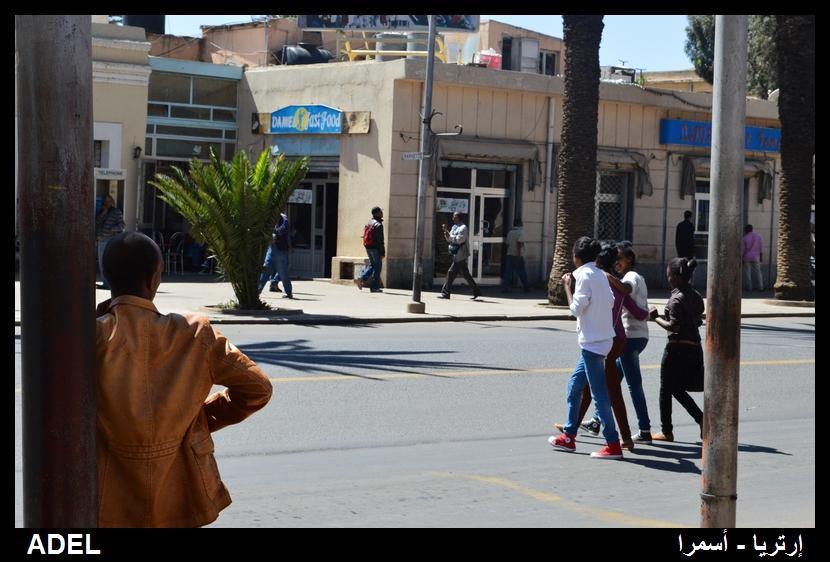 619011 المسافرون العرب أرتريا الضباب والدجي