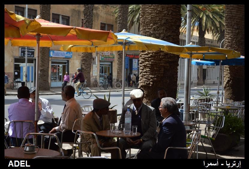 619024 المسافرون العرب أرتريا الضباب والدجي