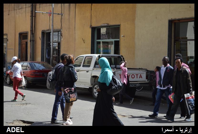 619026 المسافرون العرب أرتريا الضباب والدجي