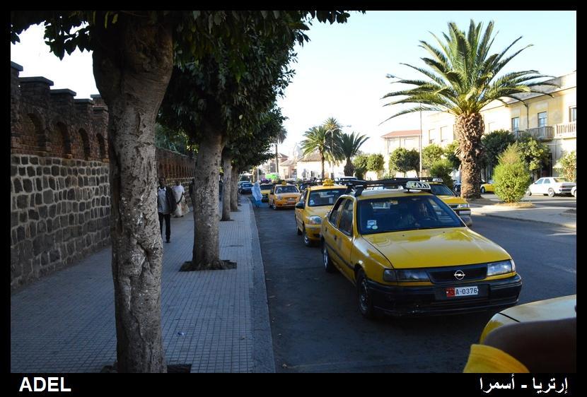 619104 المسافرون العرب أرتريا الضباب والدجي
