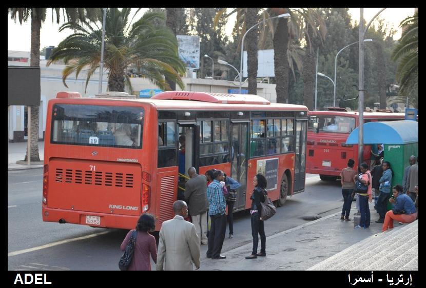 619105 المسافرون العرب أرتريا الضباب والدجي