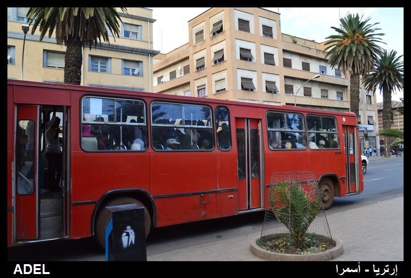 619106 المسافرون العرب أرتريا الضباب والدجي