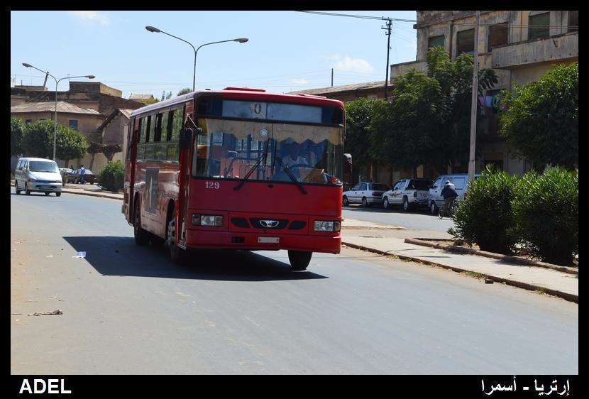 619107 المسافرون العرب أرتريا الضباب والدجي