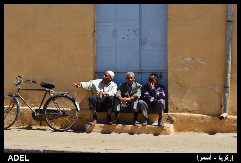 619109 المسافرون العرب أرتريا الضباب والدجي