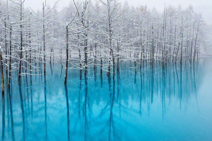The-Blue-Pond-Biei-Hokkaido-Japan.jpg