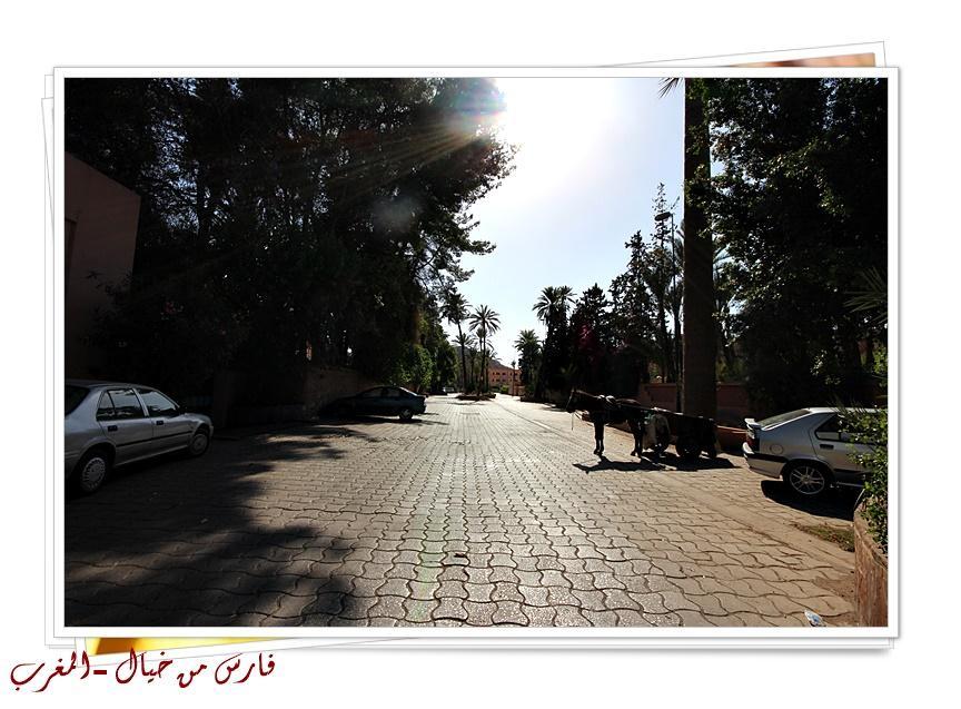 مدينة المغرب بالصور-629133