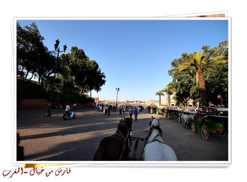 مدينة المغرب بالصور-629146