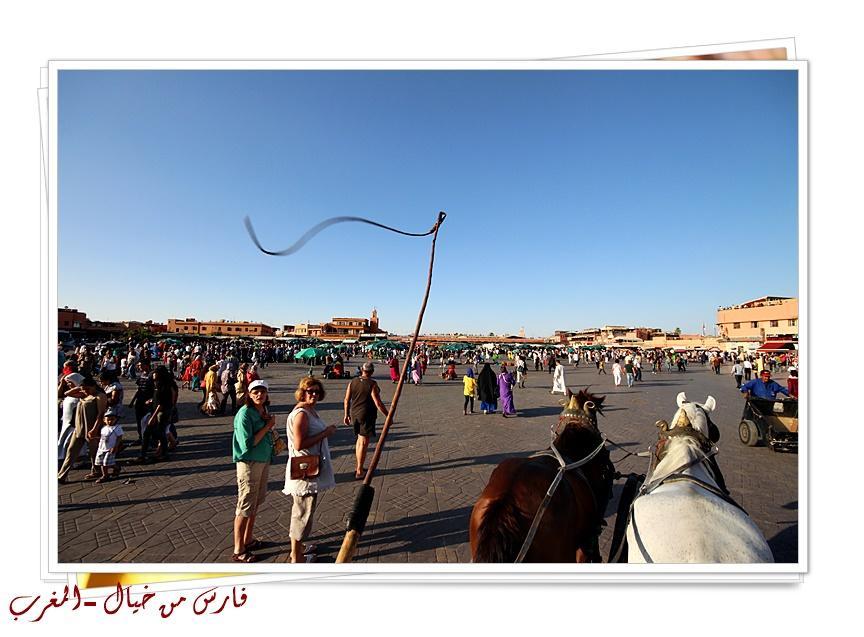 مدينة المغرب بالصور-629147