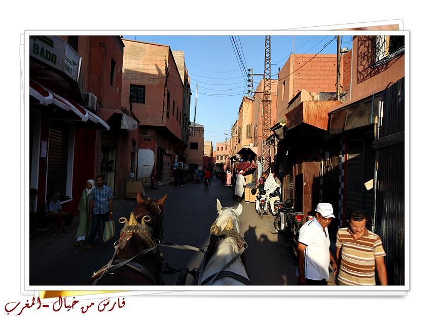 مدينة المغرب بالصور-629152