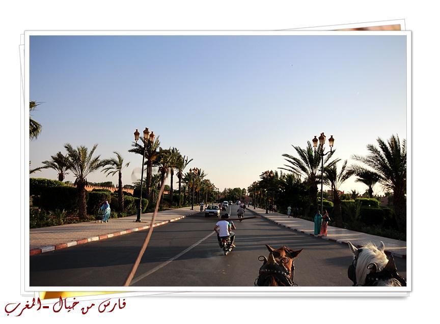 مدينة المغرب بالصور-629153