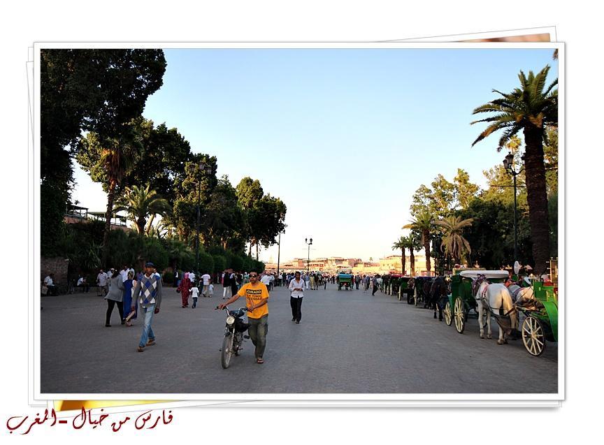 مدينة المغرب بالصور-629154
