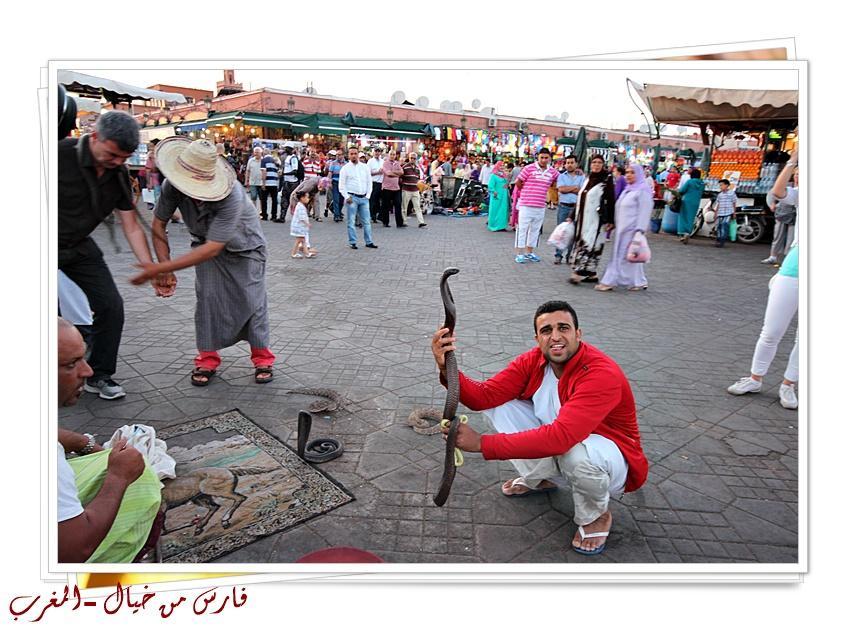 مدينة المغرب بالصور-629163
