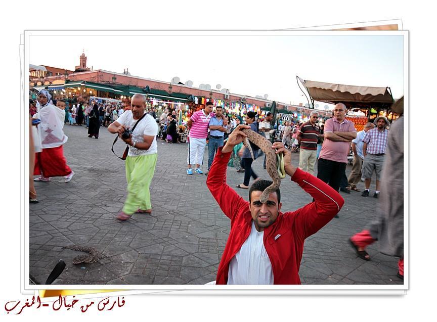 مدينة المغرب بالصور-629164
