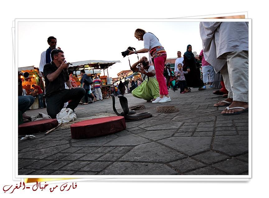 مدينة المغرب بالصور-629165