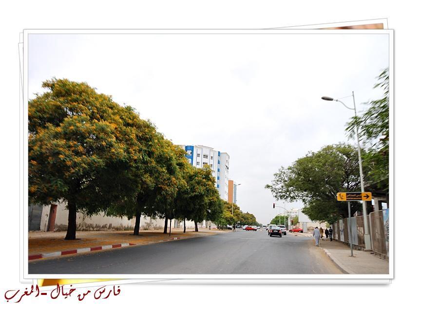 مدينة المغرب بالصور-629218