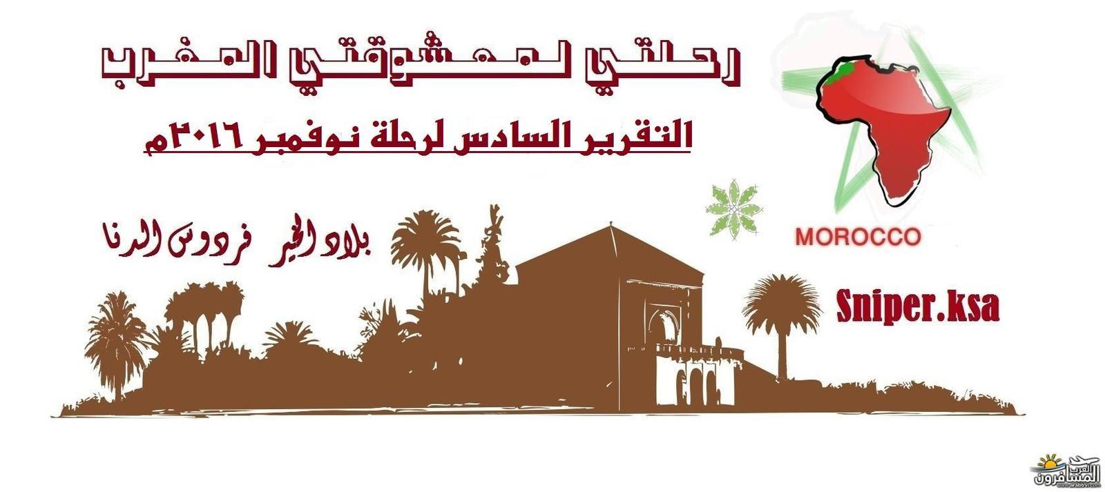 arabtrvl1480165784191.jpg
