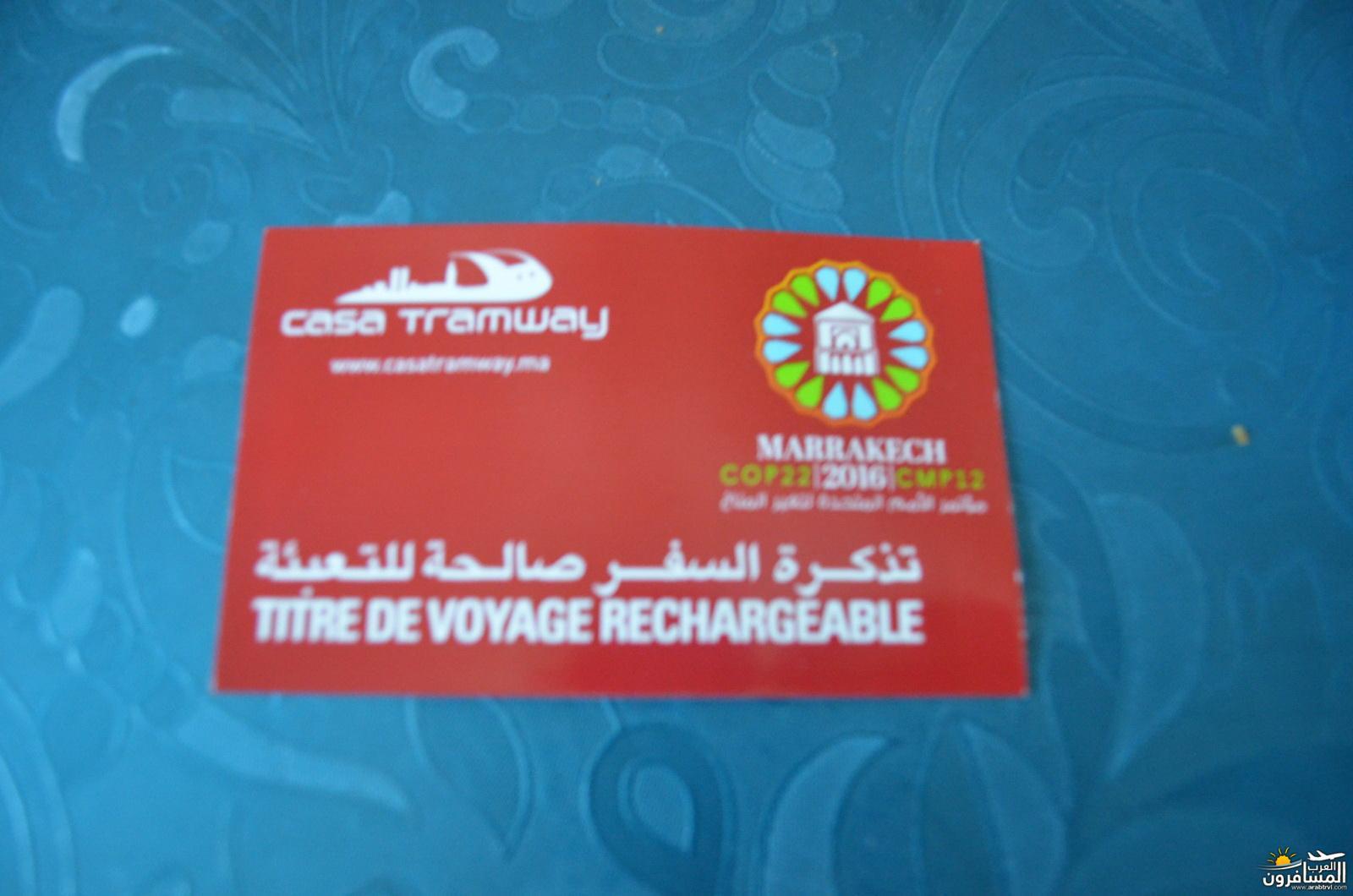 arabtrvl1480450633673.jpg