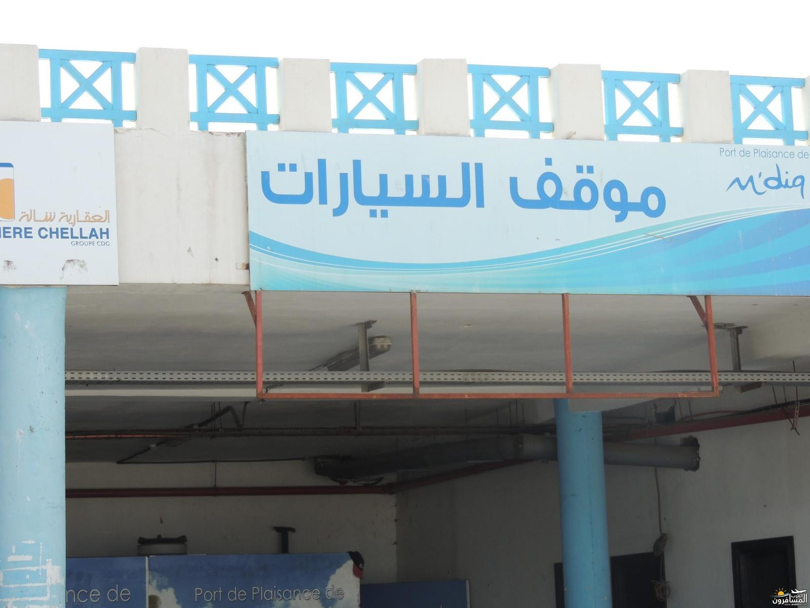 arabtrvl1496131218469.jpg